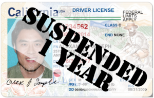 Drivers License Suspended - male